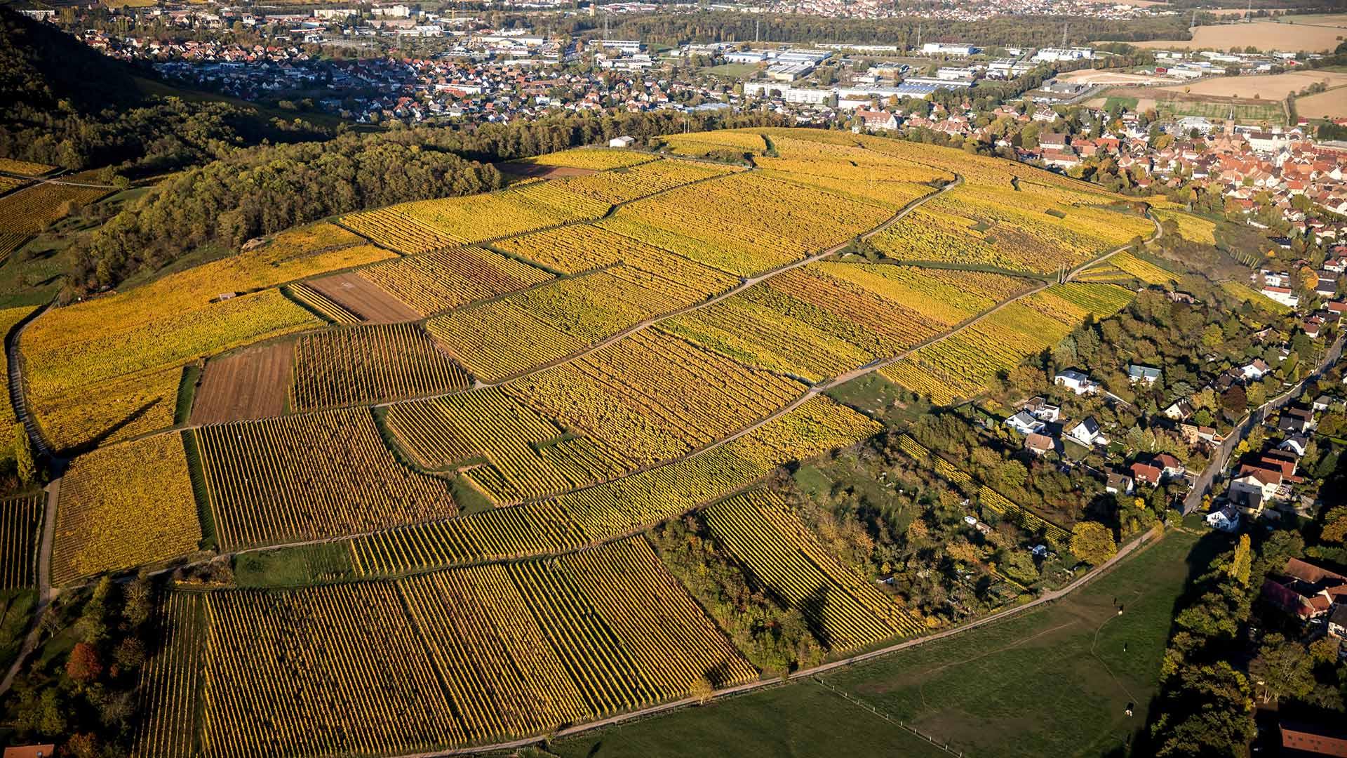 Mittelbourg